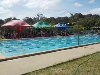 Swimming Carnival 26th November 2015